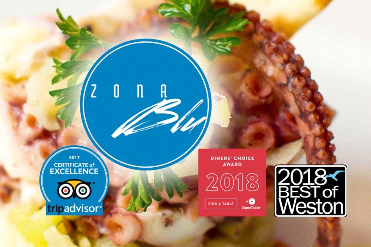 Image of Zona Blue website.